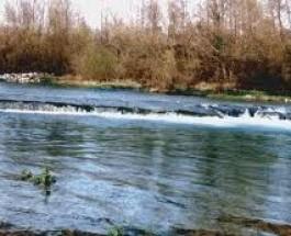 fiume Asinaro Noto – Siracusa
